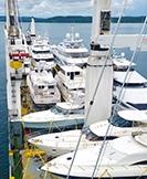 Gemi, Tekne, Yat İlaçlama